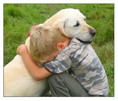 nino y perro